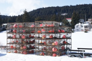 A typical Kodiak scene: crab pots lying around everywhere