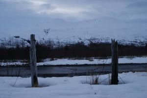 """Springtime"" in Kodiak (Hey, it's Alaska, right?)"