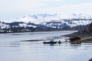 Anton Larsen Bay in May