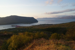 View of Larsen Bay from the hill